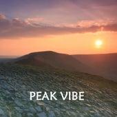 Peak Vibe by Various Artists