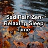 Sad Rain Zen Relaxing Sleep Time by Sounds Of Nature