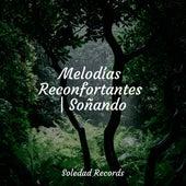 Melodías Reconfortantes | Soñando de Canciones Infantiles De Niños