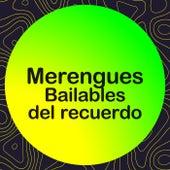 Merengues Bailables del Recuerdo de Various Artists