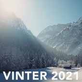Vinter 2021 fra Various Artists