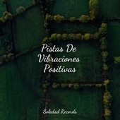 Pistas De Vibraciones Positivas by Relajación