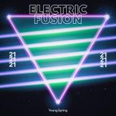 Electric Fusion 21 de Techno House