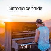 Sintonía de tarde de Various Artists