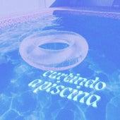 Curtindo a piscina de Various Artists
