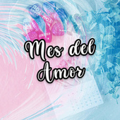 Mes del Amor von Various Artists