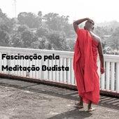Fascinação pela Meditação Budista - Música Mística para Considerar e Limpar a Mente by The Buddha Lounge Ensemble