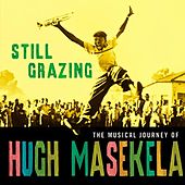 Still Grazing by Hugh Masekela