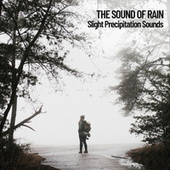 The Sound of Rain: Slight Precipitation Sounds de Lightning Thunder and Rain Storm