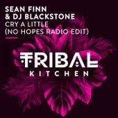 Cry a Little (No Hopes Radio Edit) by Sean Finn