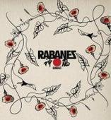 Kamikaze de Los Rabanes