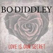 Love Is Our Secret de Bo Diddley