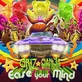Ease Your Mind by GRiZ