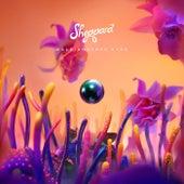 Kaleidoscope Eyes by Sheppard