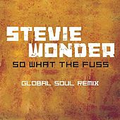 So What The Fuss-Global Soul Remix by Stevie Wonder