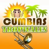 Cumbias Tropicales by Los Palmeras, Los Socios del Ritmo, Los Mirlos, Los Llayras, Los Pakines