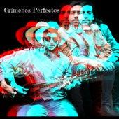 Crímenes Perfectos de Nicolás Marín