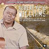 The Sonet Blues Story by Robert Pete Williams