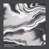 Demande à la poussière by Bertrand Betsch