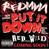 Put It Down by Redman