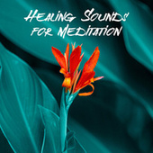Healing Sounds for Meditation (Slow Deep Breathing & Calmness) de Meditation Music Zone