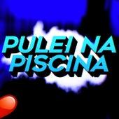 Pulei na Piscina (Funk Remix) by Dj David MM