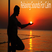 Relaxing Sounds For Calm by Color Noise Therapy