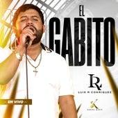El Gabito (En Vivo) de Luis R. Conriquez