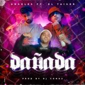 Dañada by Angeles & DJ Conds