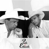 Eu e a Garça by Paulo