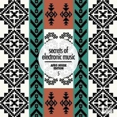 Secrets of Electronic Music: Afro House Edition, Vol. 5 de Various Artists