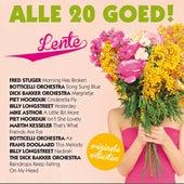 Alle 20 Goed - Lente de Various Artists
