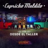 Capricho Maldito (En Vivo) de Los Rieleros Del Norte