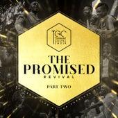 The Promised Revival, Pt. 2 (Live at the Carnival City) de Tshwane Gospel Choir
