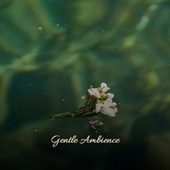 Gentle Ambience by Various Artists