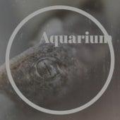 Aquarium by Various Artists