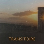 Transitoire by Various Artists