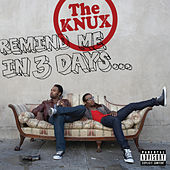 Remind Me In 3 Days... de The Knux