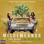 Misdemeanor (Remix) by Charlie Hustle