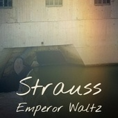 Strauss Emperor Waltz de Various Artists
