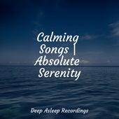 Calming Songs | Absolute Serenity by Deep Sleep Music Academy