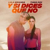 Y Si Dices Que No (feat. Tiago PZK) de Lula Miranda