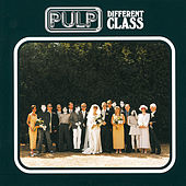 Different Class von Pulp