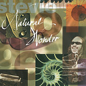 Natural Wonder de Stevie Wonder