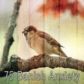 75 Banish Anxiety by Yoga Music