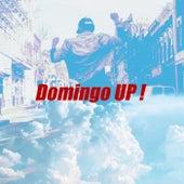 Domingo UP! de Various Artists