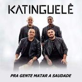 Pra Gente Matar a Saudade by Katinguelê
