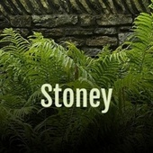 Stoney by Various Artists