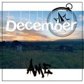 December von Lee Kay