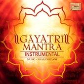 Gayatri Mantra (Instrumental) by Shailesh Dani